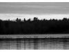 A) 23-loons-on-clary-lake-apr18