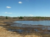 360degree_marsh_panorama06