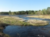marsh_panorama_southeast_end_small